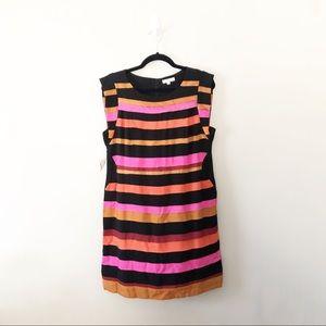 NWT Jade Melody Tan Grossgrain Ribbon Dress